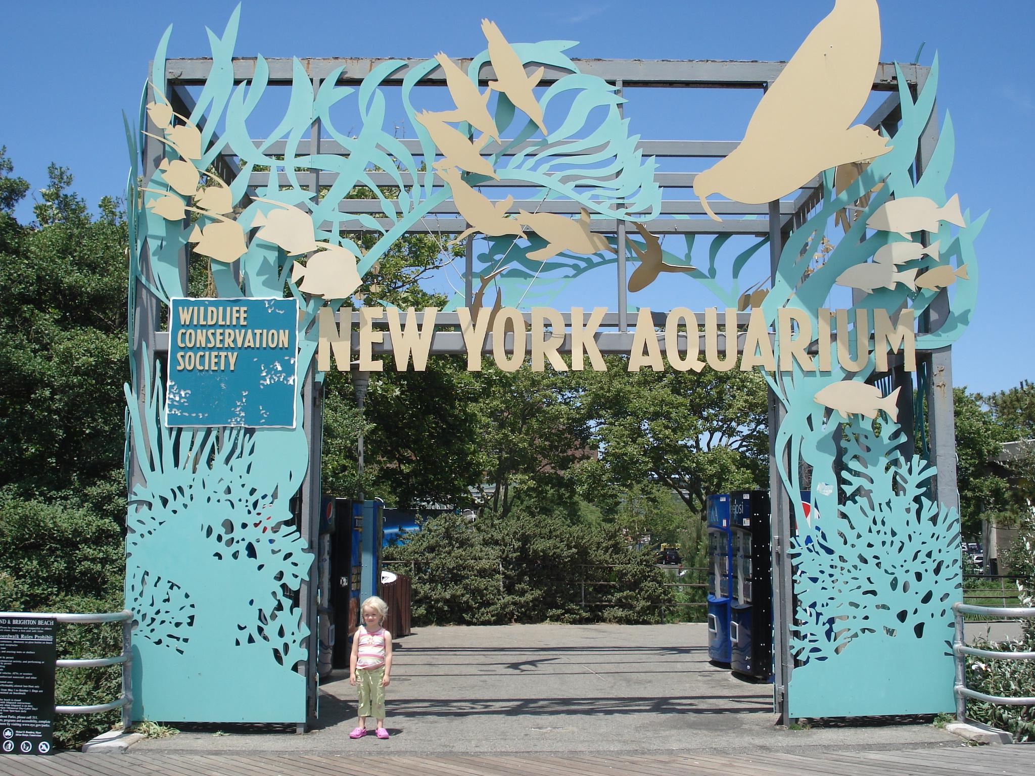 Visit To The New York Aquarium Aliens In The Apple